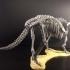 Triceratops prorsus Skeleton image