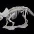 Triceratops prorsus Skeleton print image