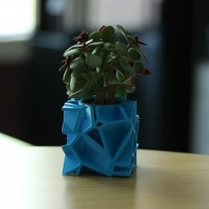 Voronoi Flower Pot - Cube Shape