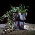 Star Trek Planter Contest Myminifactory & Tinkercad image