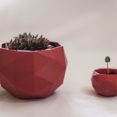 Picture of print of Flower Pot - Low Poly Этот принт был загружен Luka Bošković