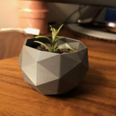 Picture of print of Flower Pot - Low Poly