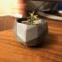 Flower Pot - Low Poly print image