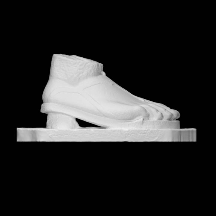 Fragment of a female foot