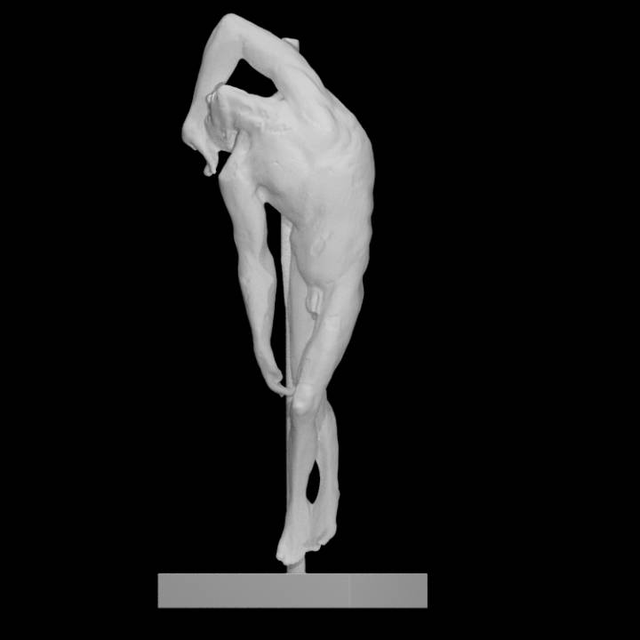 3D Printable Male Anatomy by Moøkan: The Virtual Experience Co.