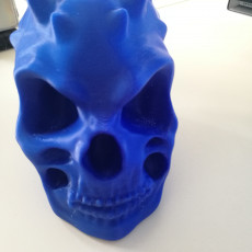 Picture of print of Demon Skull