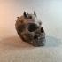 Demon Skull image