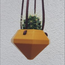 Mini hanging planter