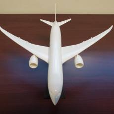 Picture of print of Snap-Fit Passenger Airplane 787-8 Этот принт был загружен Jim Cosson