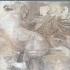 Parthenon frieze _ West VIII,15 image