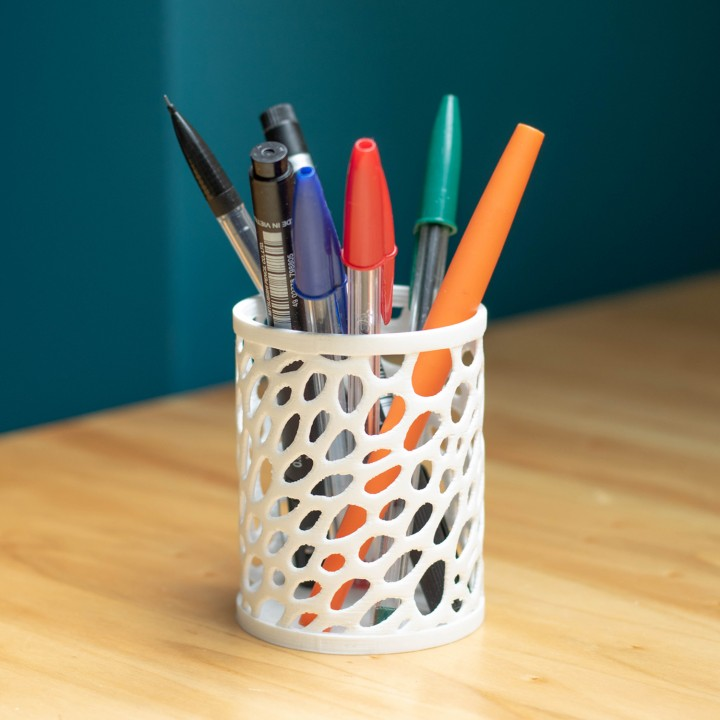 Pencil Case - Voronoi