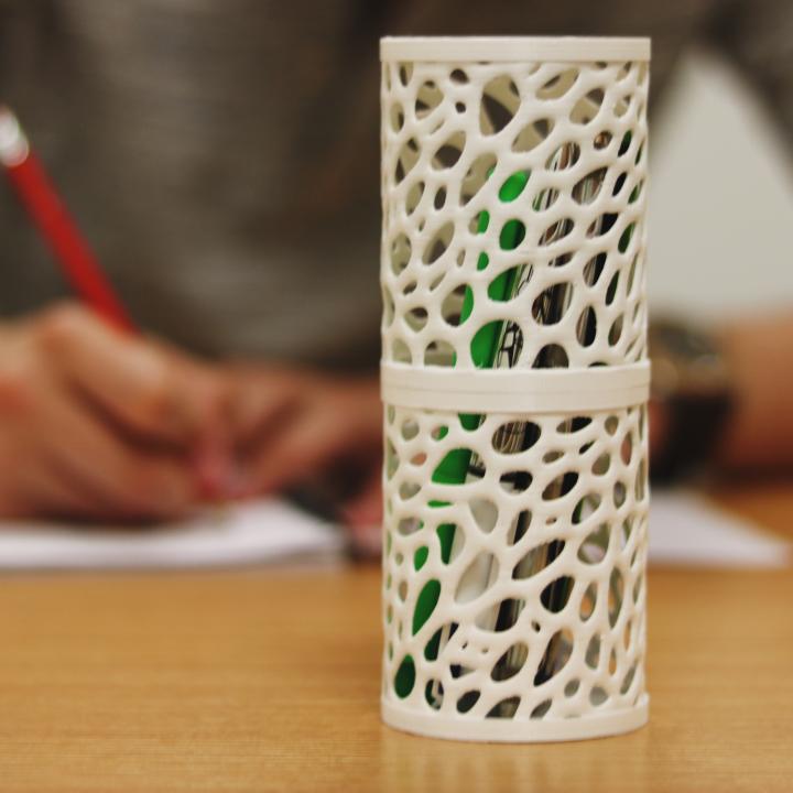 Pencil Case - Voronoi