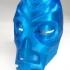 Skyrim Dragon Priest Mask image