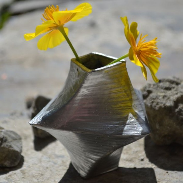 Warped and Twisted Vase
