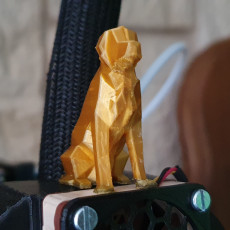 Picture of print of Low Poly Dog - Beto This print has been uploaded by Delaine Maxence