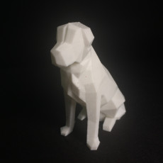 Picture of print of Low Poly Dog - Beto This print has been uploaded by Bryan Salas