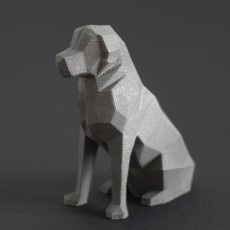 Low Poly Dog - Beto
