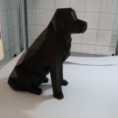 Picture of print of Low Poly Dog - Beto This print has been uploaded by Sjoerd Wiersma