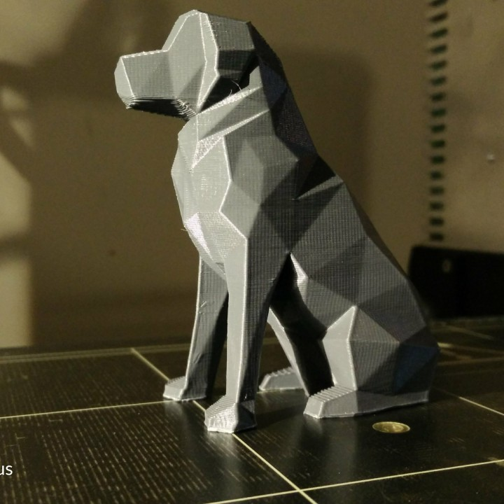 Picture of print of Low Poly Dog - Beto This print has been uploaded by Max Moors