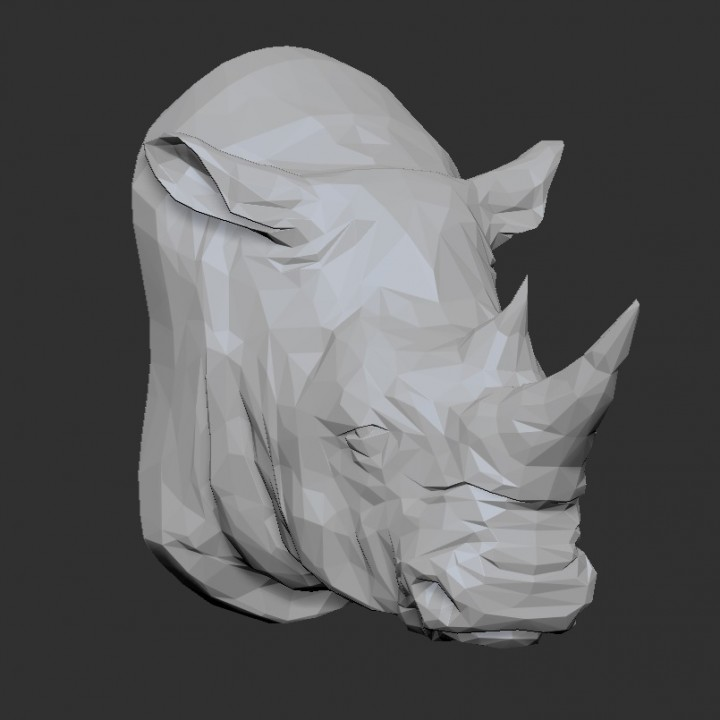 White Rhino Head - Low Poly