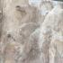 Parthenon Frieze _ West XI, 20-21 image