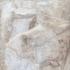 Parthenon Frieze _ West XIV, 26-27 image