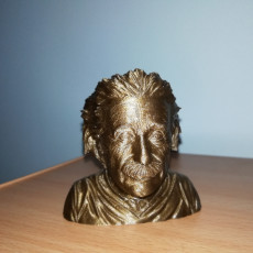 Picture of print of Albert Einstein Bust