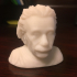 Albert Einstein Bust print image