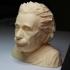Albert Einstein Bust image