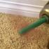 Sand Flap Flap! image