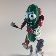Picture of print of Pickle RICK!!!