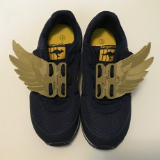 Shoe wings quick tieing
