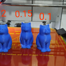 Picture of print of MakerBot Digitizer LaserCat - Layer thickness tests