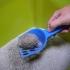 Cat Litter Scoop image