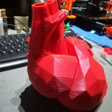 Picture of print of Low poly heart vase
