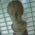 Female Head image