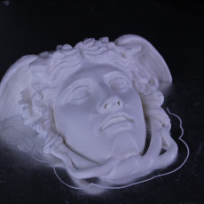 Picture of print of Medusa Rondanini Sculpture