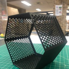 Picture of print of Hexagon fractal shelf