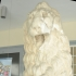 Marble lion image