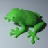 Grenouille image