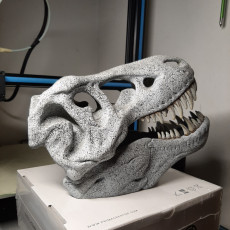 Picture of print of T-Rex skull improved as reptile hide