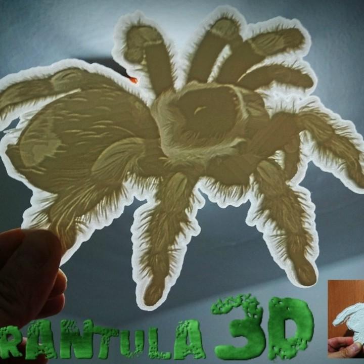 tarantula lithophane