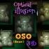 OSO 3D ILUSIÓN OPTICA  (optical illusion) image