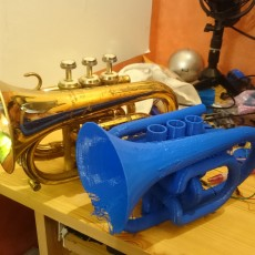 1 print Pocket Trumpet