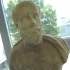 Portrait bust of a bearded man image