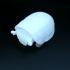 Turtloid image