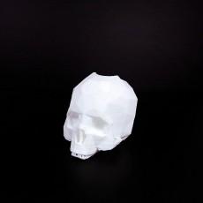 Skull-Flowerpot
