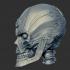 Aspartame Skull image