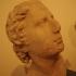 Portrait head of a man image