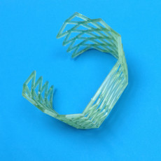 Picture of print of Cage bracelet This print has been uploaded by Li Wei Bing
